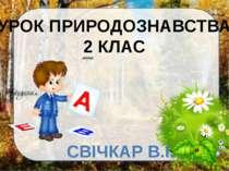 УРОК ПРИРОДОЗНАВСТВА 2 КЛАС СВІЧКАР В.І.