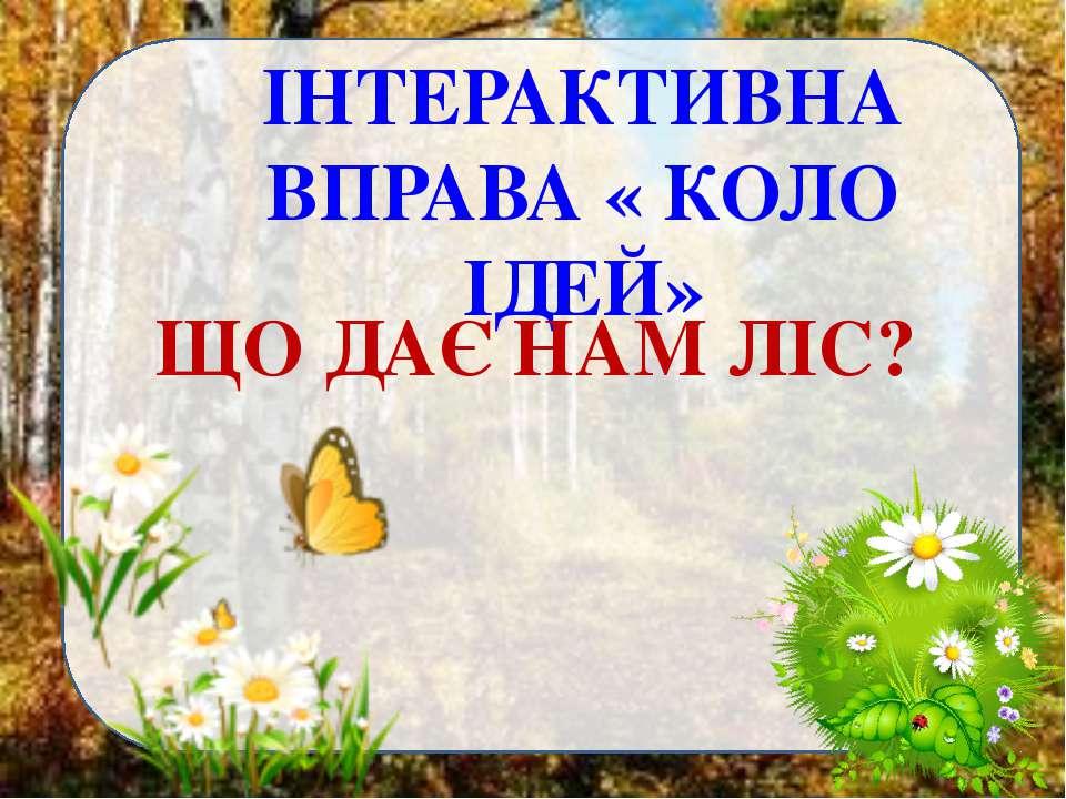 ІНТЕРАКТИВНА ВПРАВА « КОЛО ІДЕЙ» ЩО ДАЄ НАМ ЛІС?