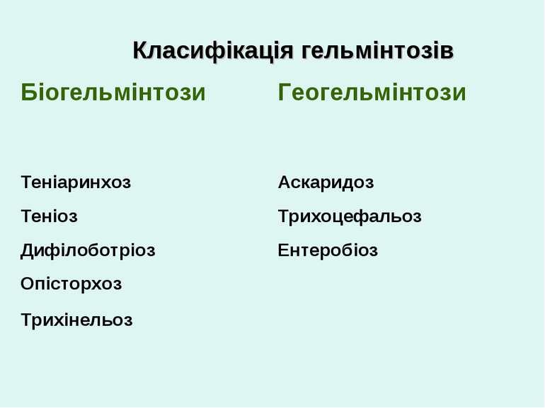 Класифікація гельмінтозів Біогельмінтози Геогельмінтози Теніаринхоз Аскаридоз...