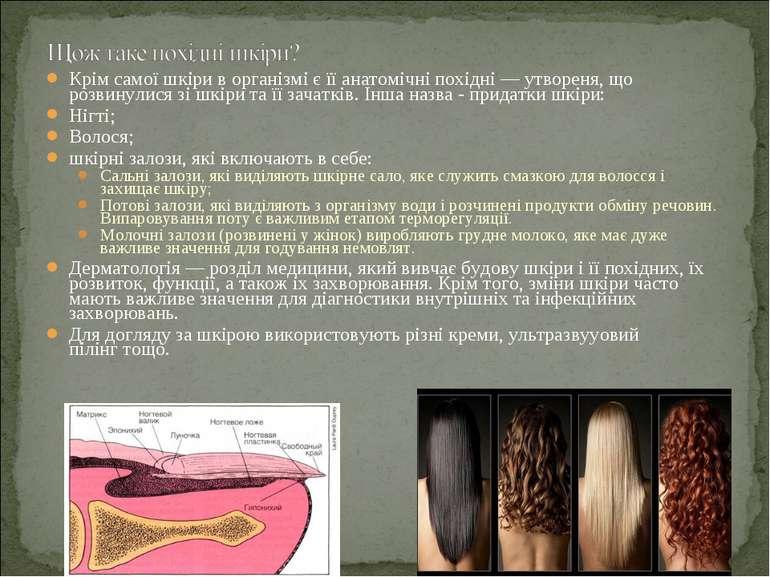 Крім самої шкіри ворганізмі є її анатомічні похідні— утвореня, що розвинули...