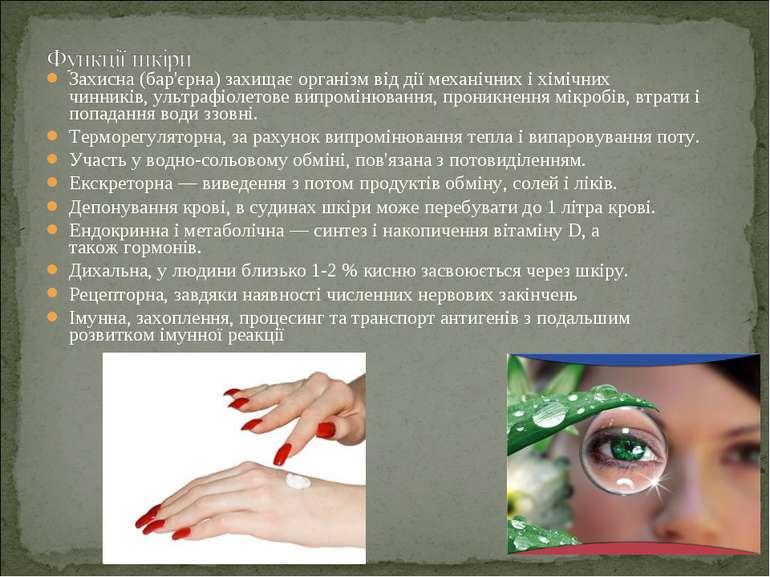 Захисна (бар'єрна) захищає організм від дії механічних і хімічних чинників,у...