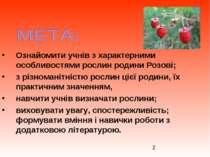 Ознайомити учнів з характерними особливостями рослин родини Розові; з різнома...