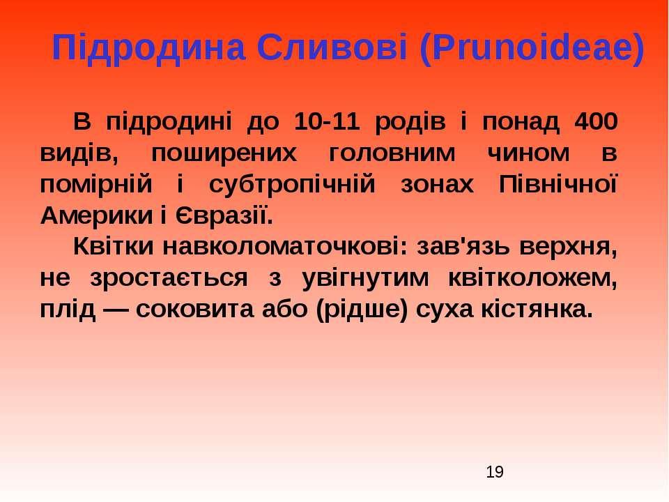 Підродина Сливові (Prunoideae) В підродині до 10-11 родів і понад 400 видів, ...