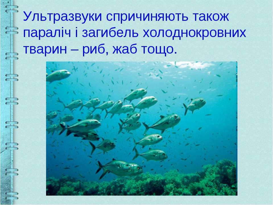 Ультразвуки спричиняють також параліч і загибель холоднокровних тварин – риб,...