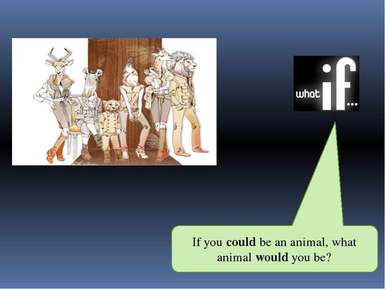 If you could be an animal, what animal would you be?
