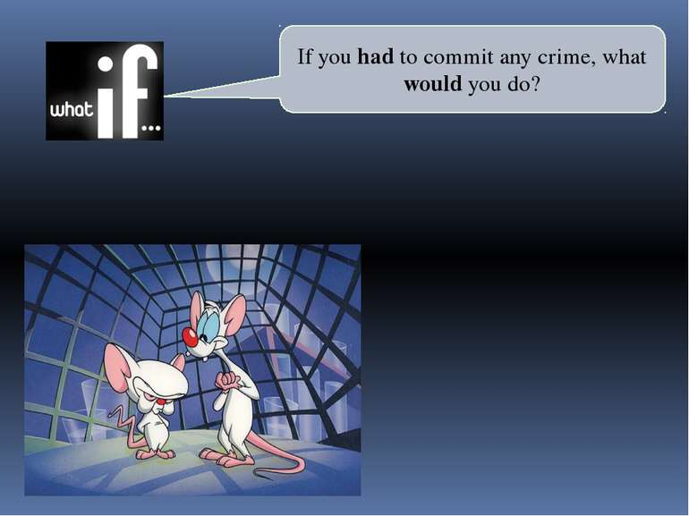 If you had to commit any crime, what would you do?
