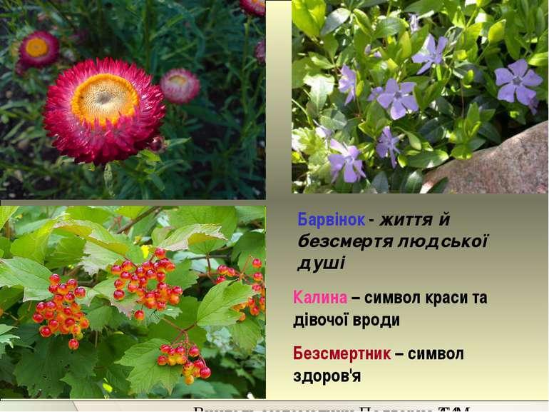 Віночок плели із 12 живих квітів, кожна з яких булаі оберегом, і лікарем Бар...