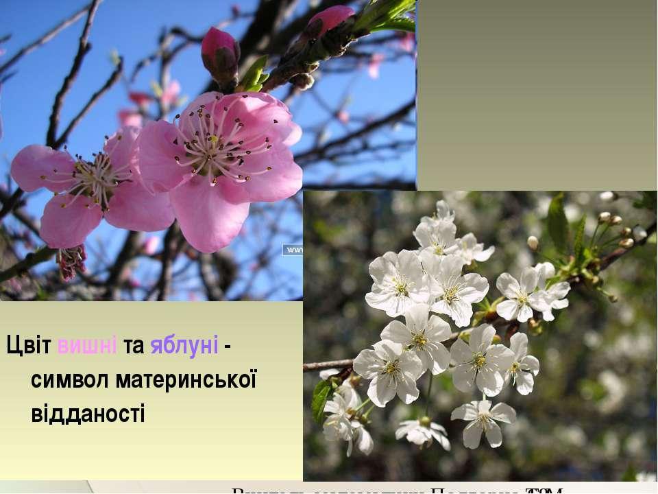 Цвіт вишні та яблуні - символ материнської відданості Вчитель математики Подг...