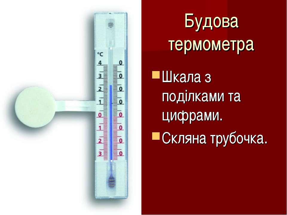 Будова термометра Шкала з поділками та цифрами. Скляна трубочка.