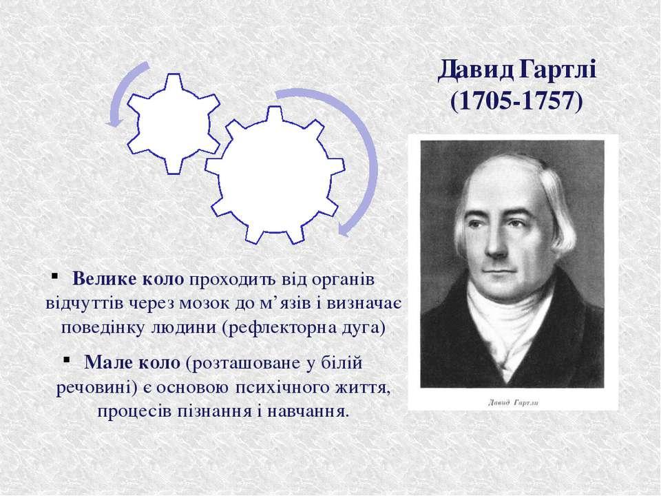 Давид Гартлі (1705-1757) Велике коло проходить від органів відчуттів через мо...