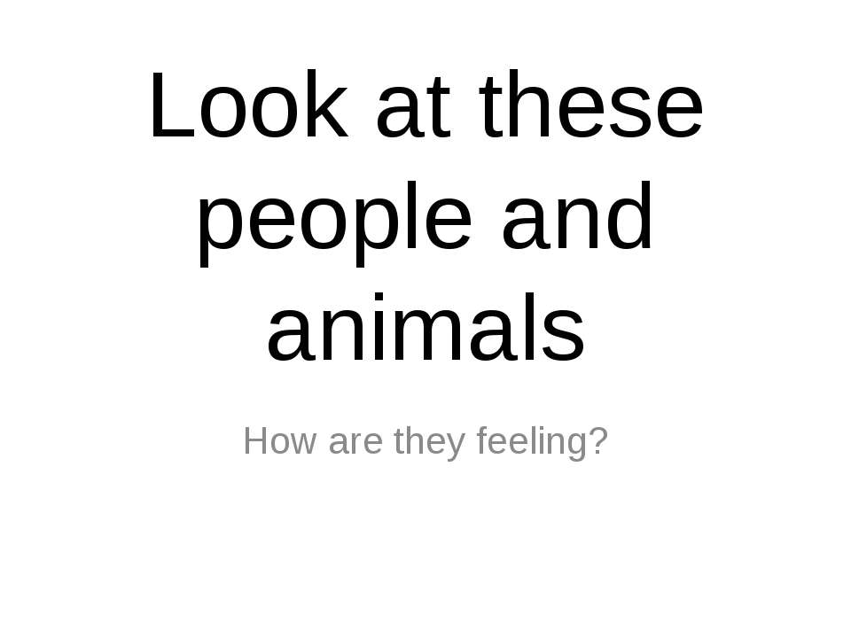 Look at these people and animals How are they feeling?