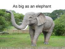 As big as an elephant