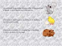 It´s very small. It can be grey, brown or white. It likes cheese and it squea...