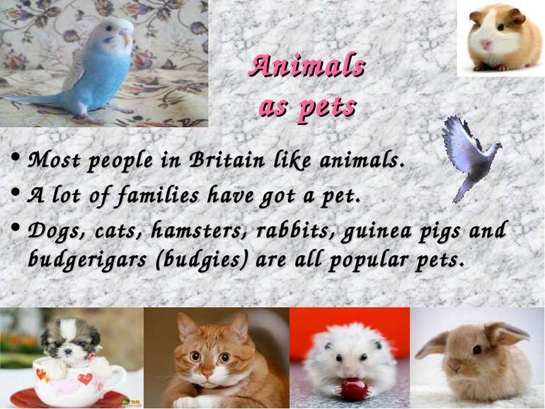 Animals as pets Most people in Britain like animals. A lot of families have g...