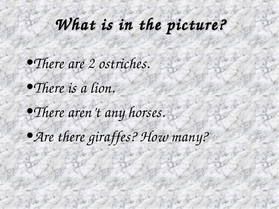 There are 2 ostriches. There is a lion. There aren't any horses. Are there gi...