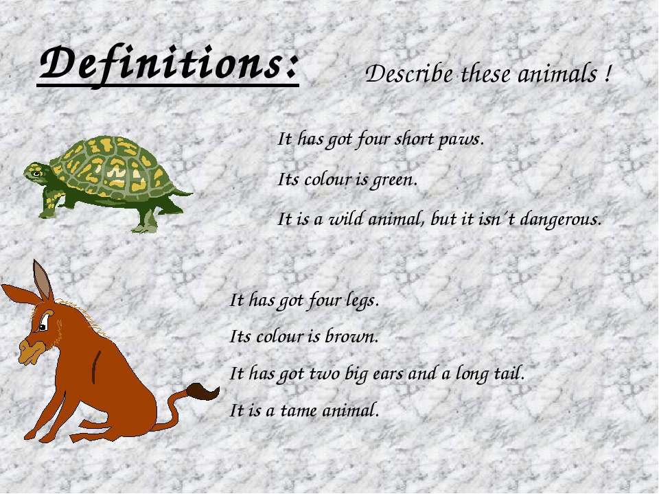 Definitions: Describe these animals ! It has got four short paws. Its colour ...