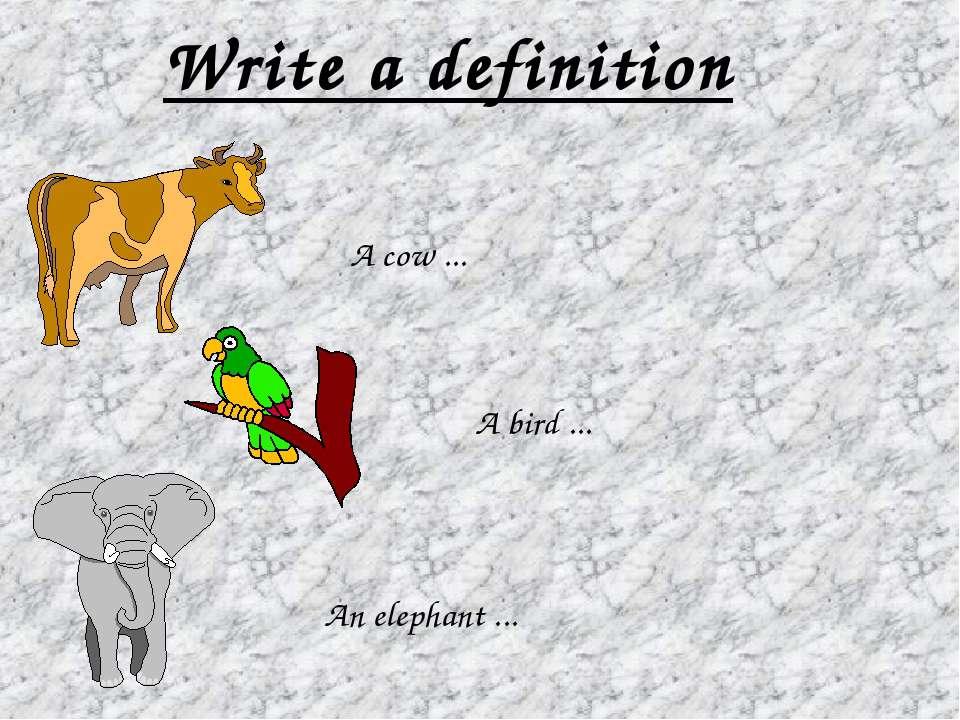 Write a definition An elephant ... A bird ... A cow ...