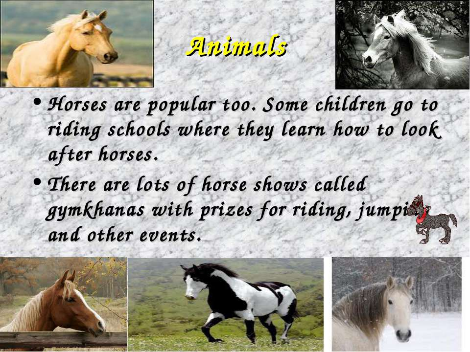 Animals Horses are popular too. Some children go to riding schools where they...