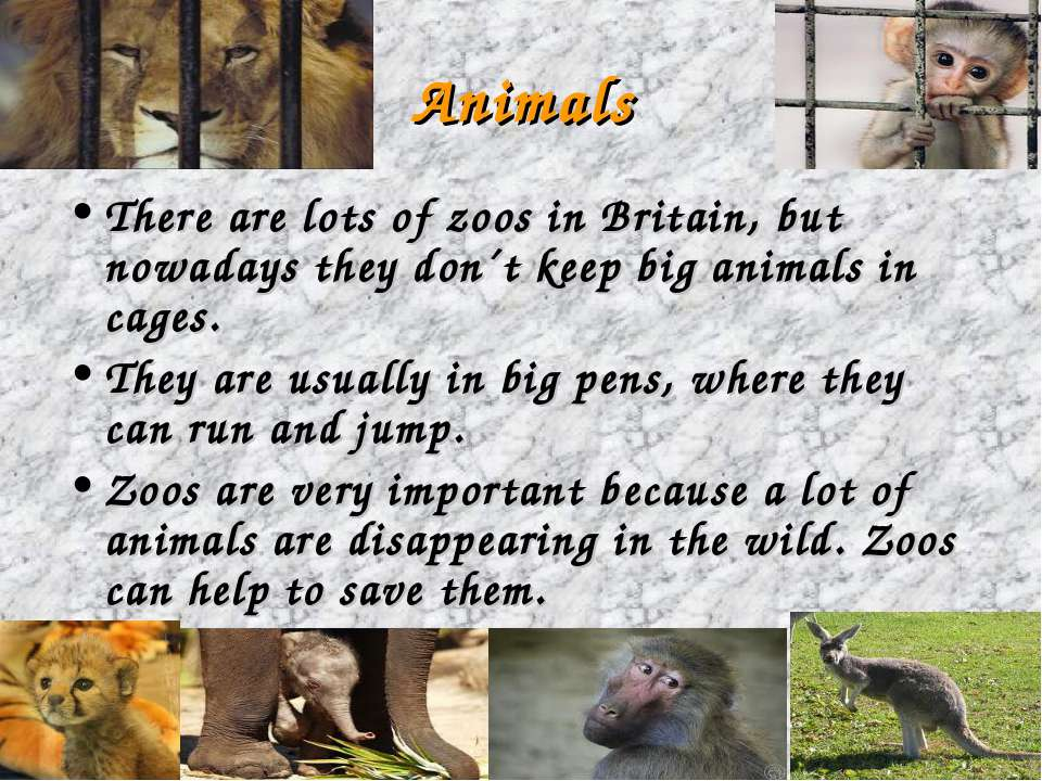 Animals There are lots of zoos in Britain, but nowadays they don´t keep big a...