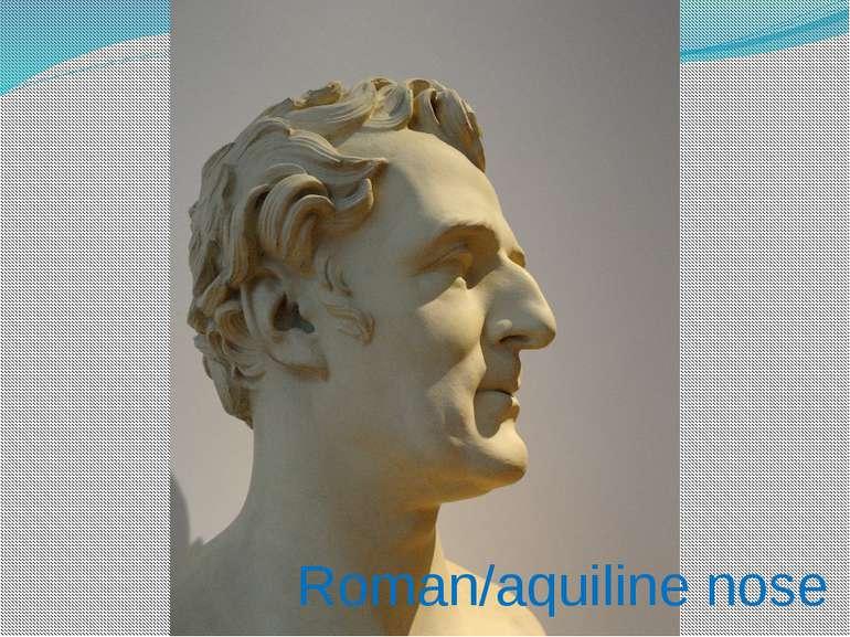 Roman/aquiline nose