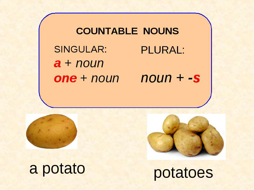 SINGULAR: a + noun one + noun PLURAL: noun + -s COUNTABLE NOUNS potatoes a po...