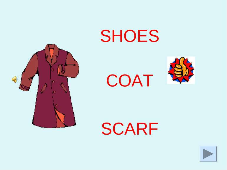 SHOES COAT SCARF