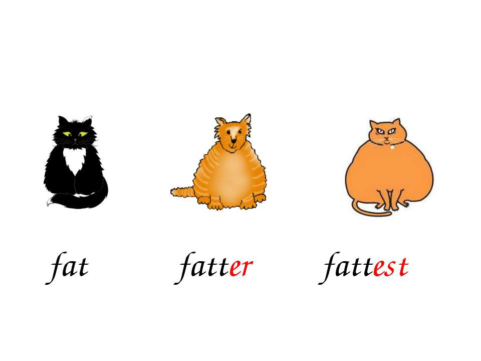 fatter fattest fat