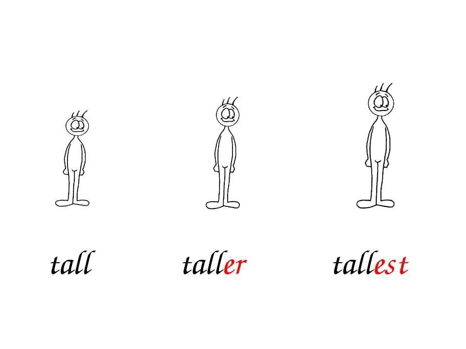taller tallest tall