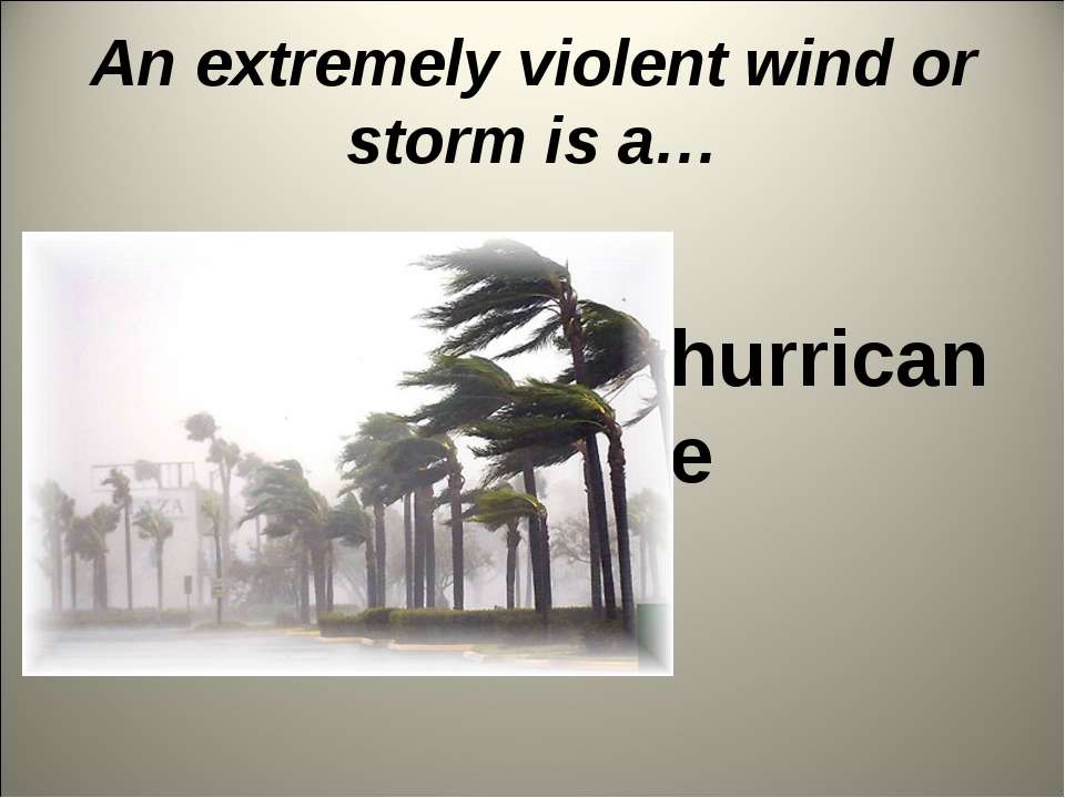 An extremely violent wind or storm is a… hurricane
