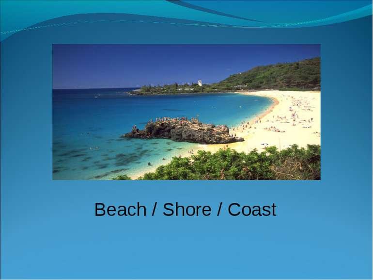 Beach / Shore / Coast