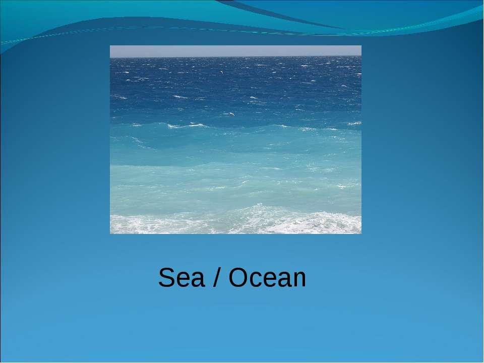 Sea / Ocean