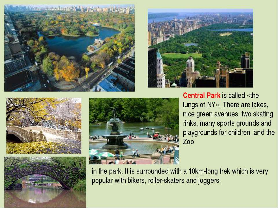 Central Park is called «the lungs of NY». There are lakes, nice green avenues...