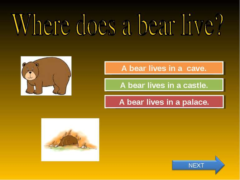 Try Again Great Job! A bear lives in a castle. A bear lives in a cave. Try Ag...