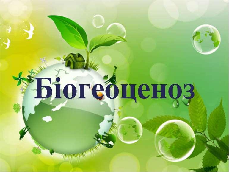 Біогеоценоз {