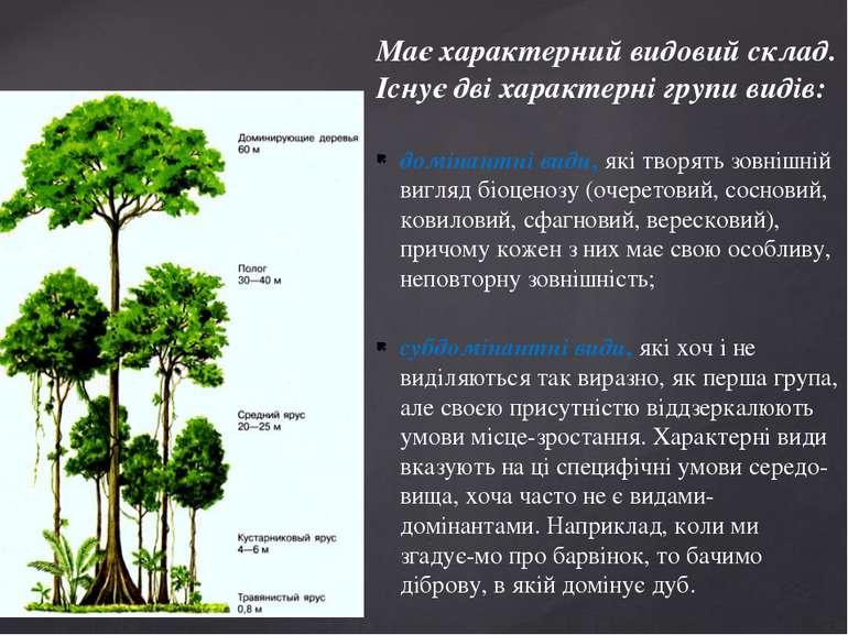 Має характерний видовий склад. Існує дві характерні групи видів: домінантні в...