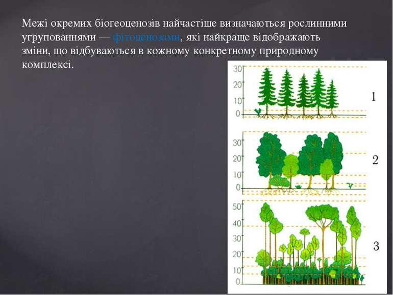 Межі окремих біогеоценозів найчастіше визначаються рослинними угрупованнями —...