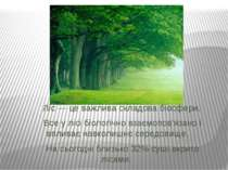 Ліс — це важлива складова біосфери. Все у лісі біологічно взаємопов'язано і в...