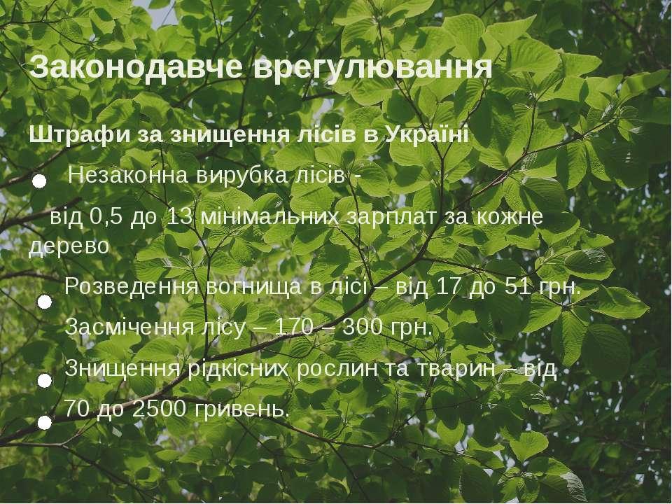 Законодавче врегулювання Штрафи за знищення лісів в Україні Незаконна вирубка...