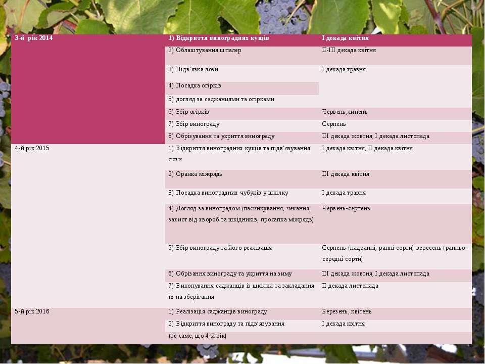 3-й рік 2014 1) Відкриття виноградних кущів І декада квітня 2) Облаштування ш...
