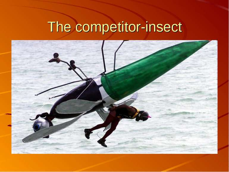 The competitor-insect