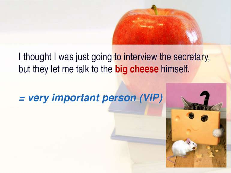 I thought I was just going to interview the secretary, but they let me talk t...