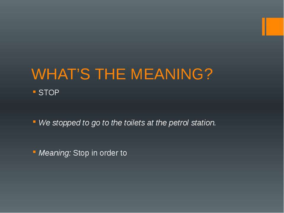WHAT'S THE MEANING? STOP We stopped to go to the toilets at the petrol statio...