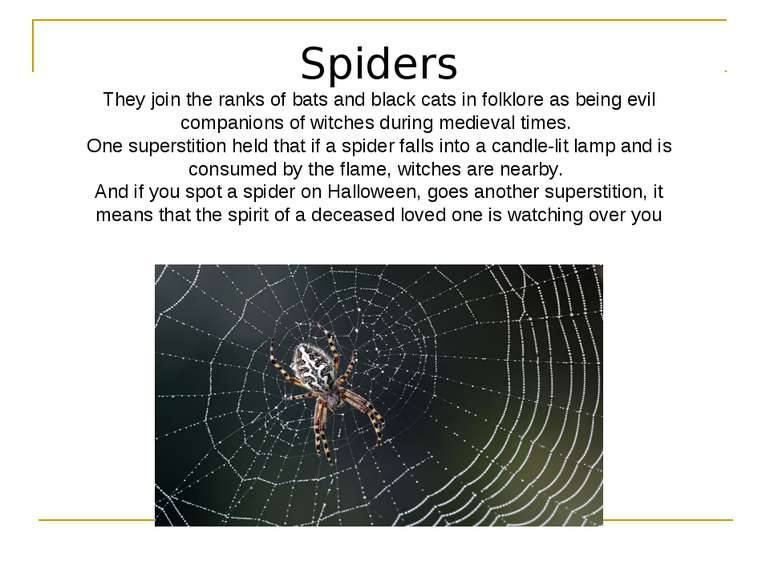 Spiders They join the ranks of bats and black cats in folklore as being evil ...