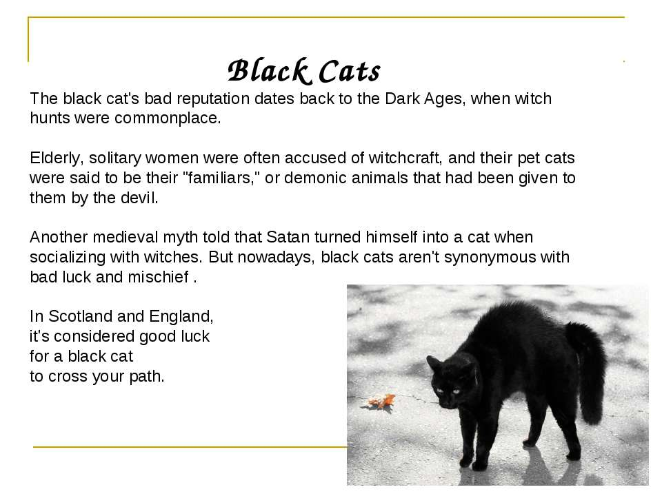 Black Cats The black cat's bad reputation dates back to the Dark Ages, when w...