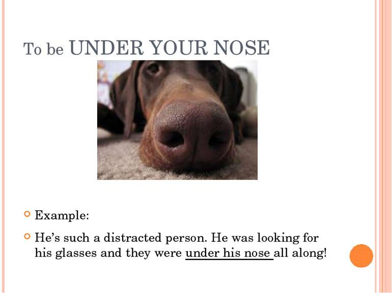 To be UNDER YOUR NOSE Example: He's such a distracted person. He was looking ...