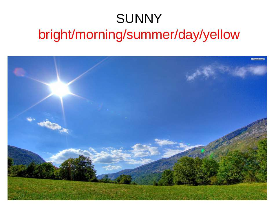 SUNNY bright/morning/summer/day/yellow