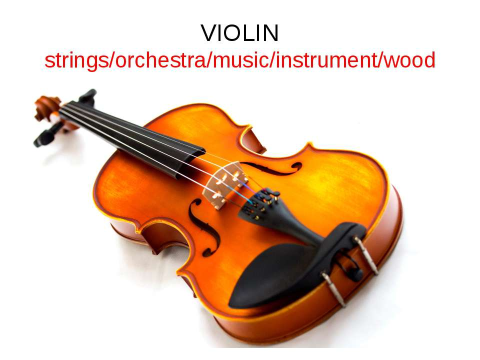 VIOLIN strings/orchestra/music/instrument/wood