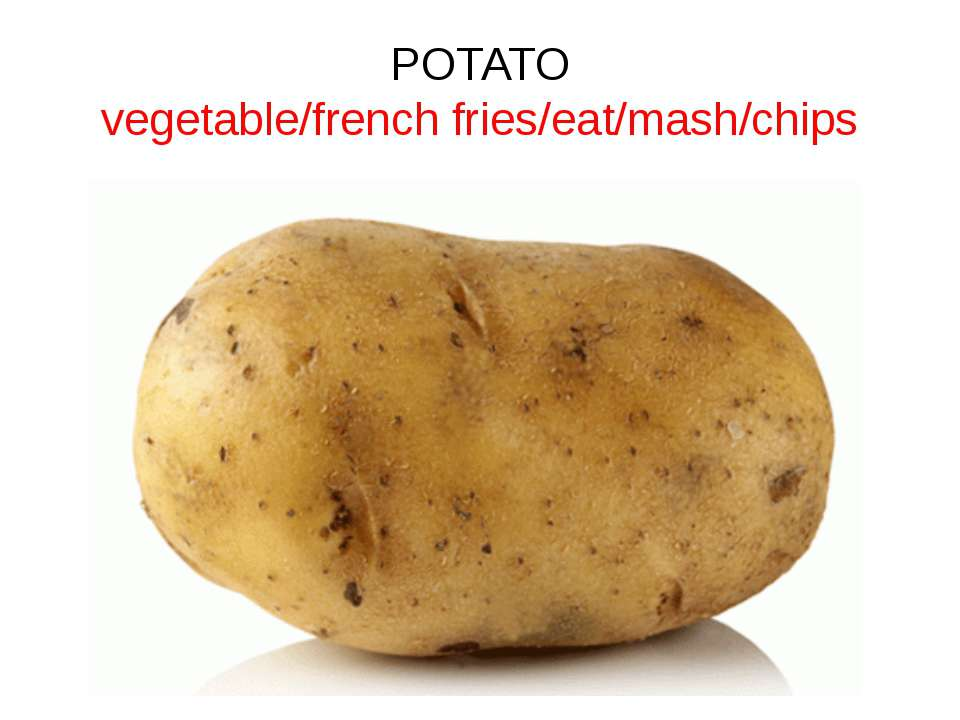 POTATO vegetable/french fries/eat/mash/chips