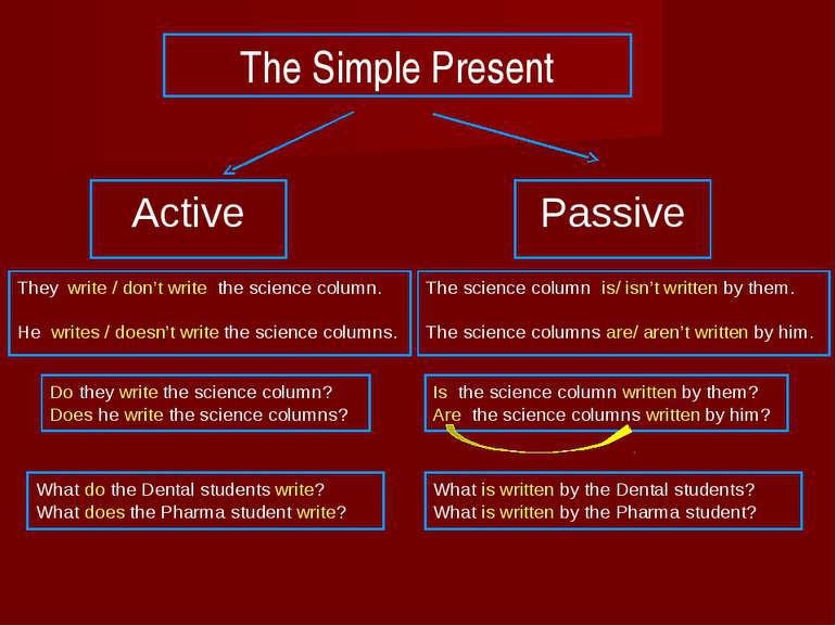 The Simple Present Active Passive They write / don't write the science column...