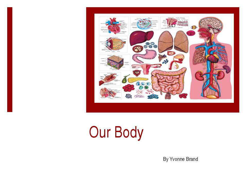 Our Body By Yvonne Brand
